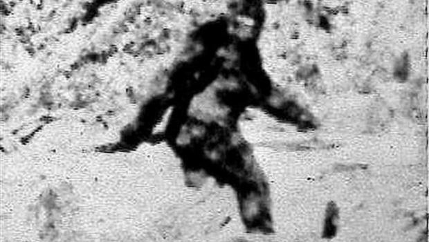 bigfoot.jpg