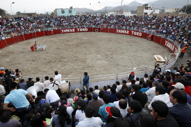 Bullfighting festival in Peru