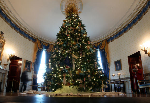 The White House Christmas Tree arrives