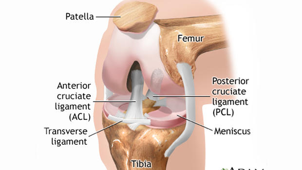 Torn Meniscus Treatments Physical Therapy Just As Good As Surgery Says Study