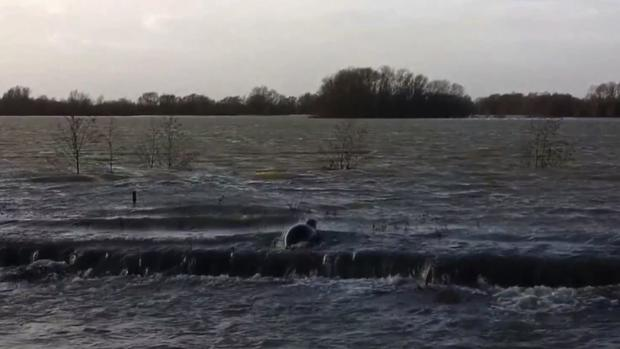 A seal from the sea spotted swimming across flooded fields north of London.