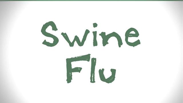 Fast Draw: Swine flu