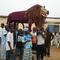 Ghana_523.jpg
