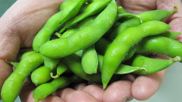 edamame: is the future of american soy farmers' profits in edible