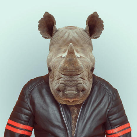 """Zoo Portraits"": Animals dressed up as people"