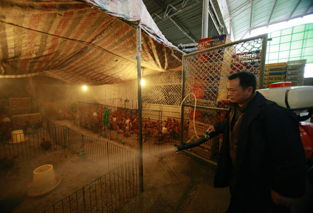 Bird Flu infects more in China