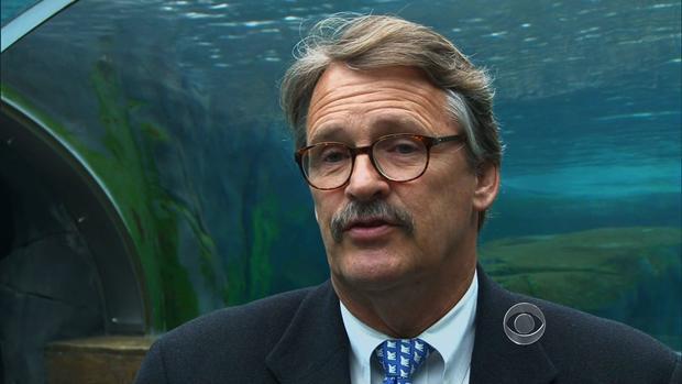 Jeffrey Bonner, president of Saint Louis Zoo.