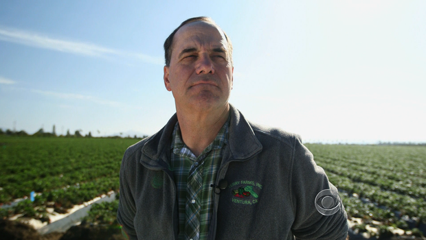 Edgar Terry runs a strawberry farm in Ventura, Calif.