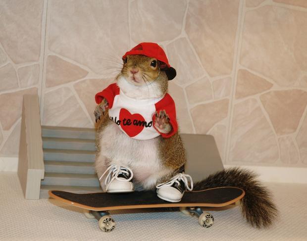 022_Skateboardin.jpg