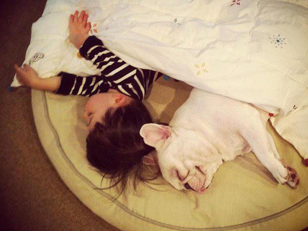 Tasuku and Muu nap in Muu's dog bed