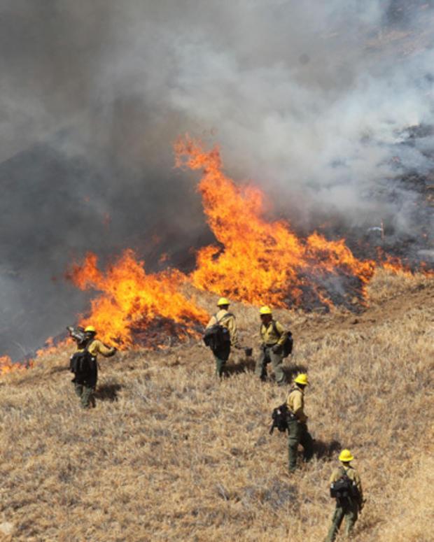 Wildfire_AP52815533370.jpg