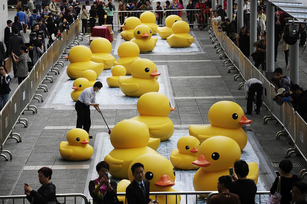 It's a bird, a plane - a giant rubber duck