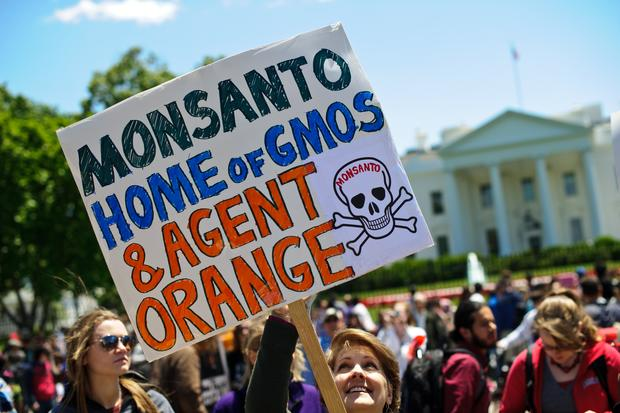 Widespread protests against Monsanto