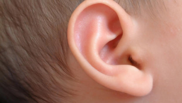 Image result for ears