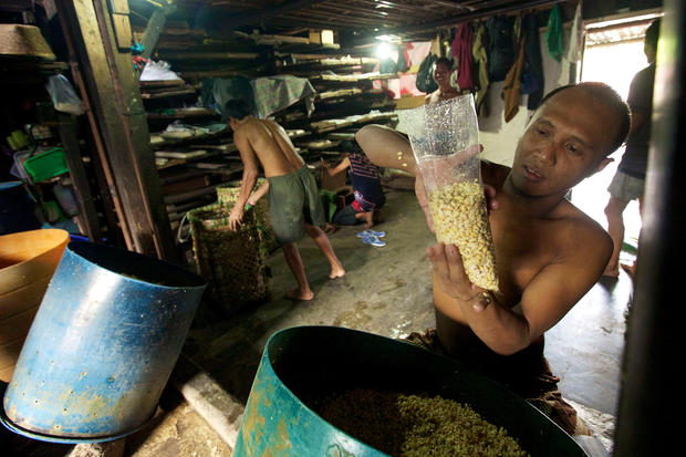 Inside an Indonesian tempeh factory