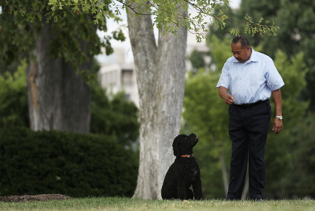 New top dog at the White House