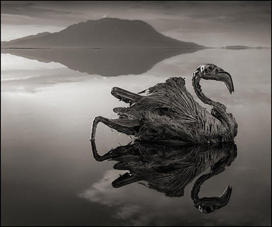 Haunting images of Africa and the world's deadliest lake