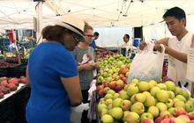 Study: Apple a day prevents heart attack, stroke