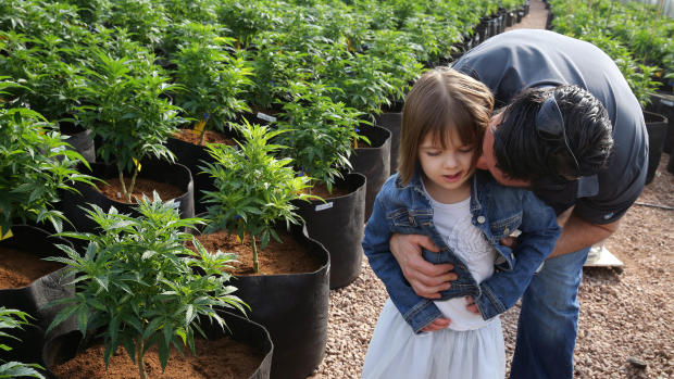 Special pot strain attracts pediatric patients