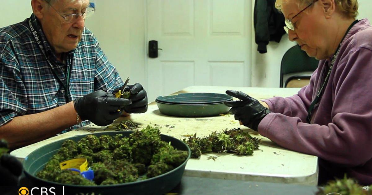 Marijuana sales mean new high for Garden City, Colorado: How ...