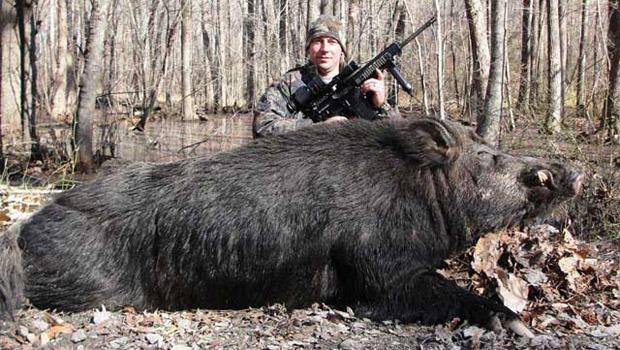 hunter-hog.jpg
