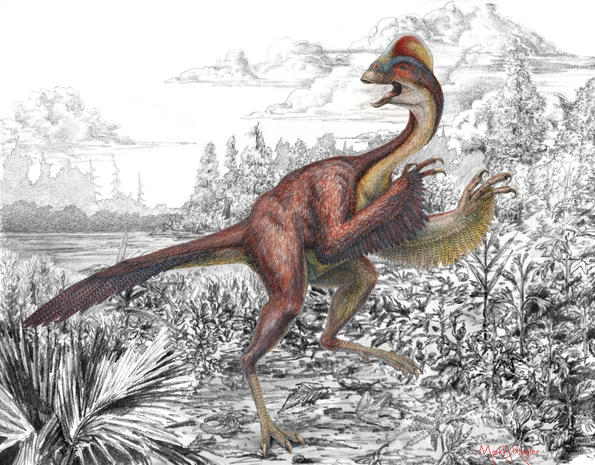 """Chicken from hell"" dinosaur makes formal scientific debut"