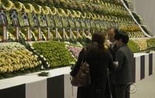 Families of missing South Korea ferry passengers endure grim wait