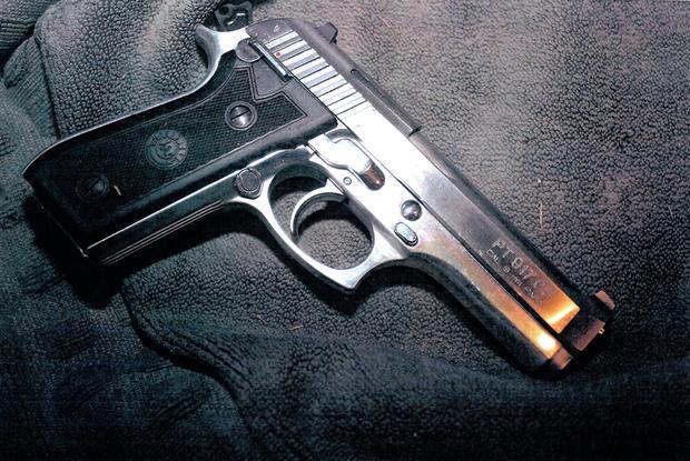 Oscar Pistorius' gun