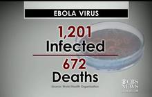 Ebola virus kills hundreds in West Africa