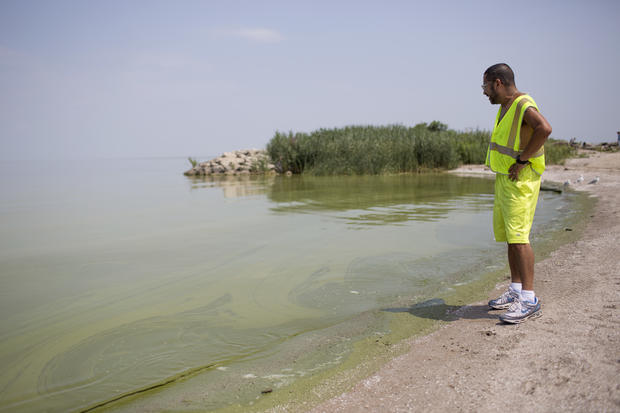 Algae spreads across Lake Erie