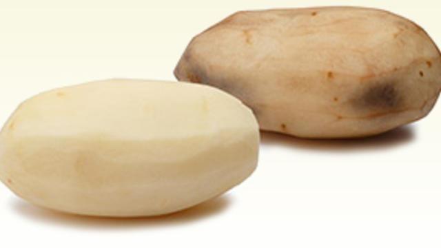 gmo-potato.jpg