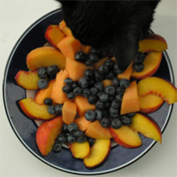 fruit-plate-bebe-244.jpg