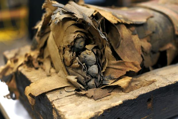 Scientists open mummy's coffin in Chicago