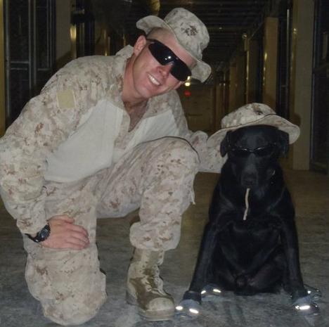 Dog and U.S. Marine bond during war