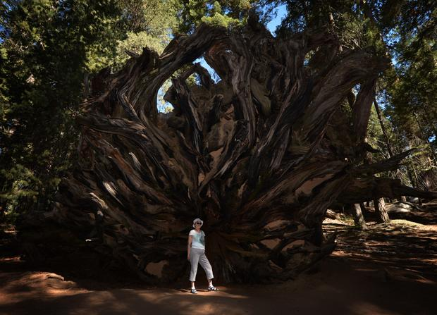 californias-droughtreutersgetty456082582.jpg