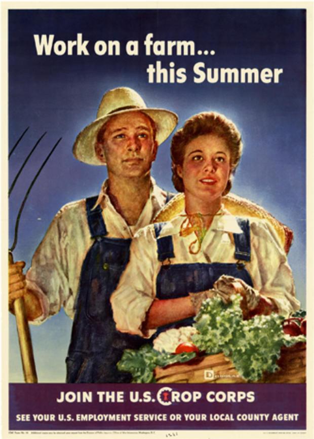 victory-garden-poster-04.jpg