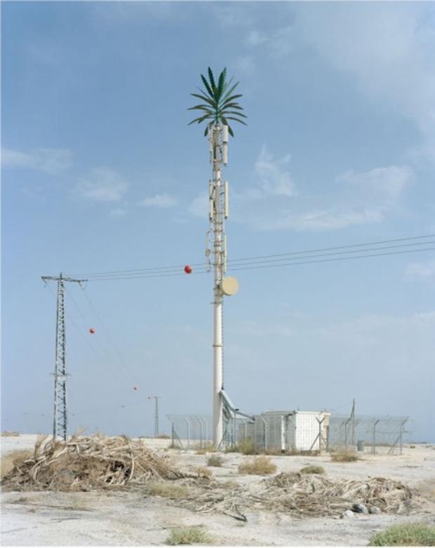 robert-voitnew-treesovnat-436x550.jpg