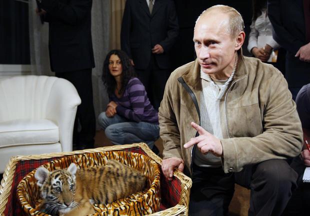 Putin_babytigerrtx9e4i.jpg
