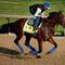 kentucky-derby-18-american-pharoah-471521760.jpg