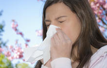 Allergy survival guide: 10 tips from a top doctor