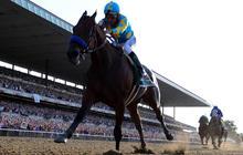 Horse racing's Triple Crown winners