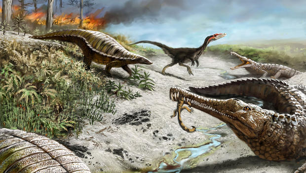 why the first dinosaurs steered clear of the equator cbs