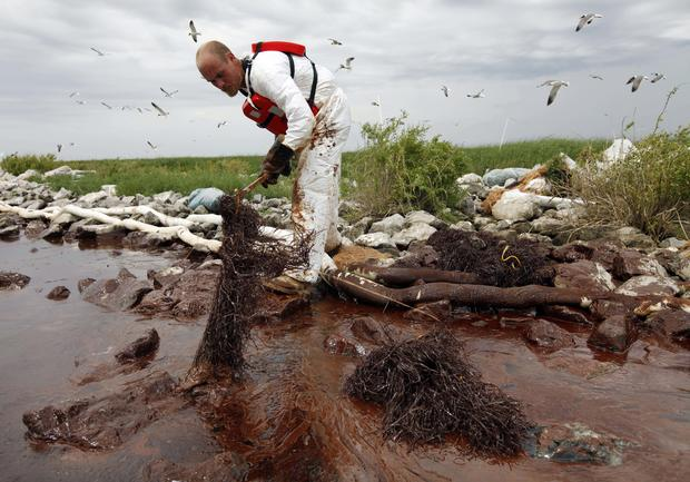Oil Spill: 100 Days, 100 Photos