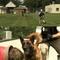 secret-service-dog-training.jpg