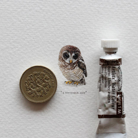 Lorraine Loots' paintings for ants