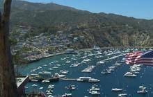 Catalina Island in California struggles in drought