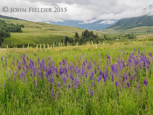 john-fielder-crested-butte-co-2015-5.jpg