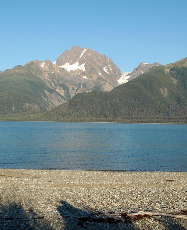 muir-glacier-and-inlet20052.jpg