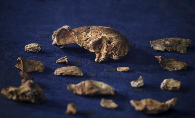 2015-09-10t112213z2119418695gf10000200154rtrmadp3archaeology-burials.jpg