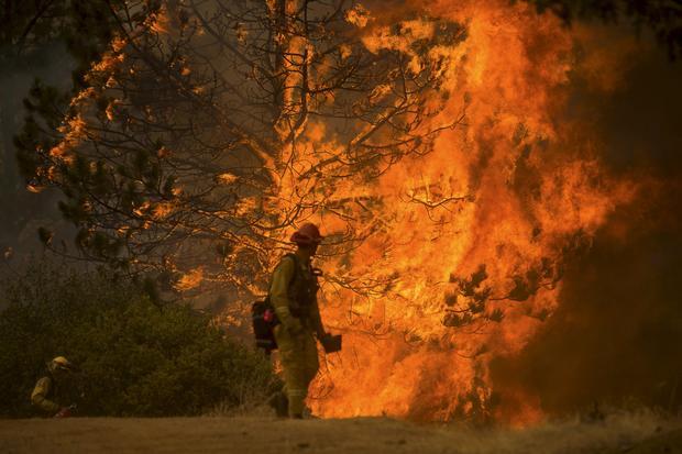 cal-fire.jpg